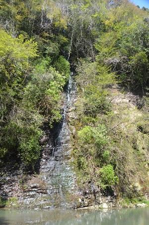 20140407養老渓谷粟又の滝10
