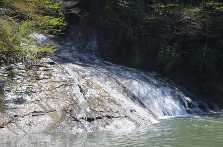 20140407養老渓谷粟又の滝18