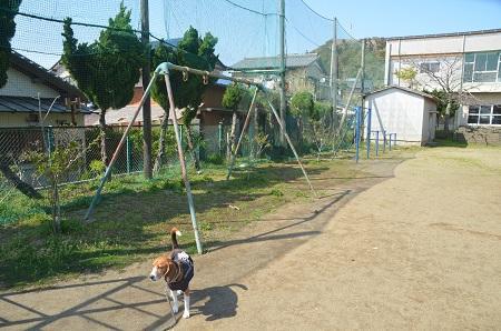 20140407岩和田小学校12