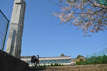 20140407岩和田小学校09