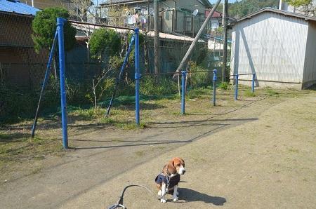 20140407岩和田小学校13