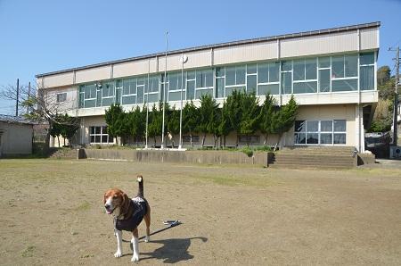 20140407岩和田小学校20