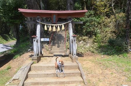 20140411妙見神社富里02