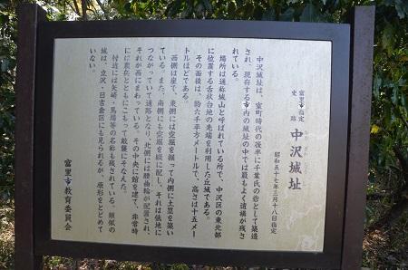 20140411中沢城址07