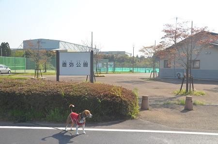 20140427直弥公園01