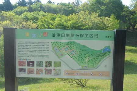 20140427直弥公園09