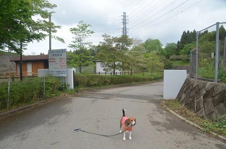 20140501富里ふるさと自然公園03