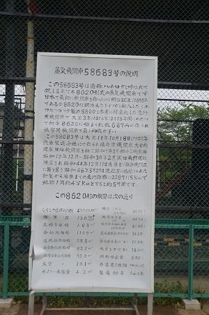 20140505高崎川南公園10
