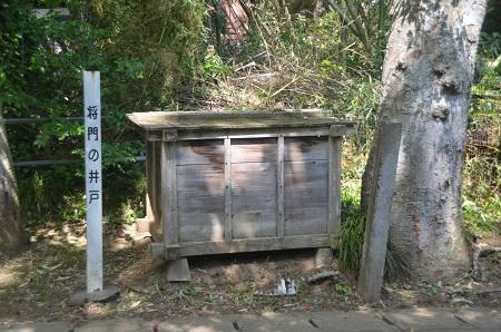 20140510竹袋城址01