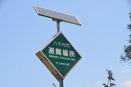 20140510村上緑地公園20