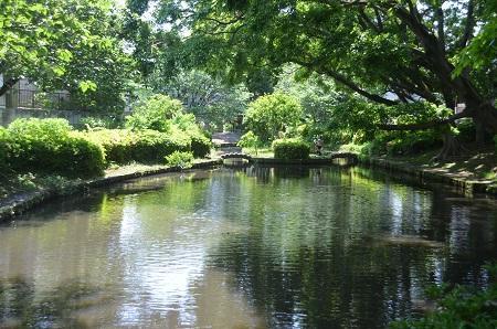 20140510加賀清水公園05