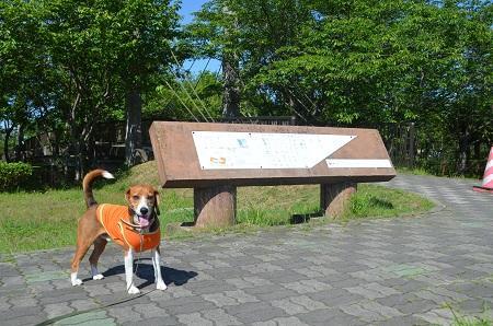 20140518ふるさとふれあい公園09