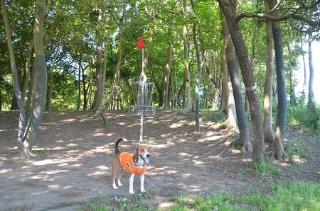 20140518ふるさとふれあい公園19