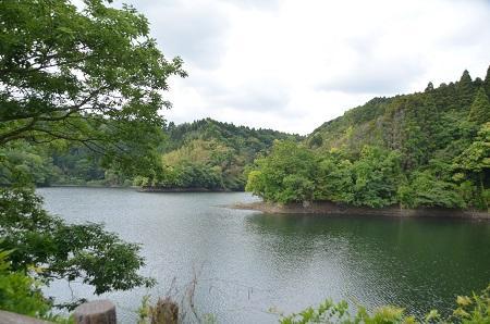 20140519小中池公園28