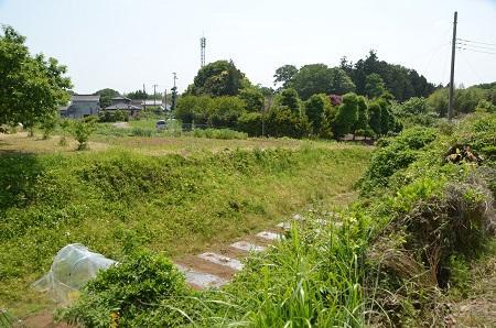 20140524戸崎城址09