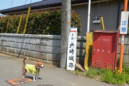20140524戸崎城址14