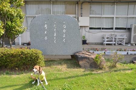 20140524宍塚小学校06