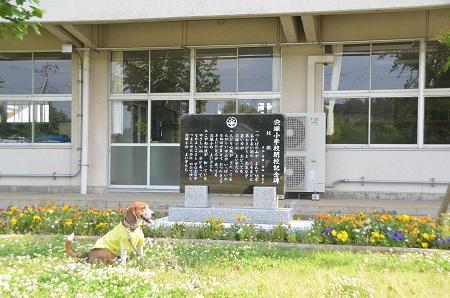 20140524宍塚小学校08