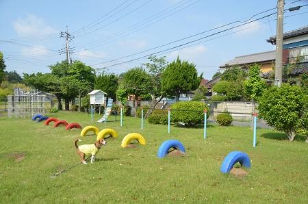 20140524宍塚小学校09