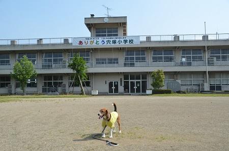 20140524宍塚小学校14