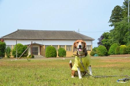 20140524志士庫小学校西成井分校12