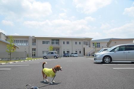 20140524志筑小学校跡11