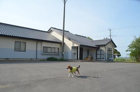 20140524柏崎小学校跡05
