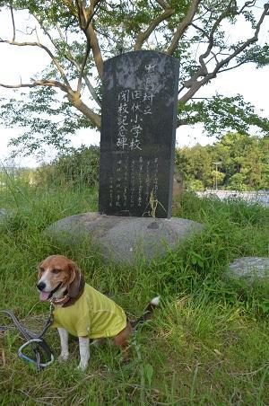 20140524田伏小学校10