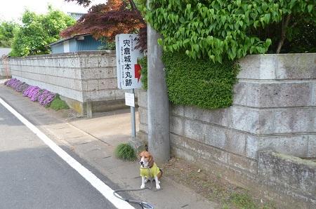 20140524宍倉城址01