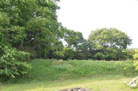 20140524宍倉城址14