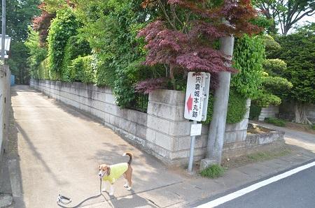 20140524宍倉城址21