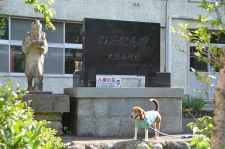 20140602大鶴小学校16