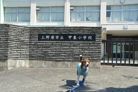 20140602甲東小学校18