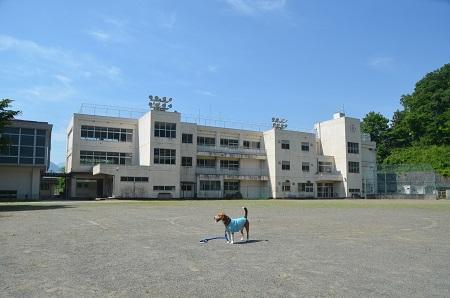20140602甲東小学校22