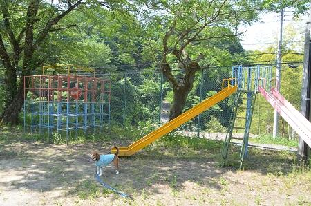 20140602大目小学校09