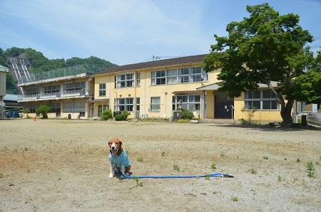20140602沢松小学校08