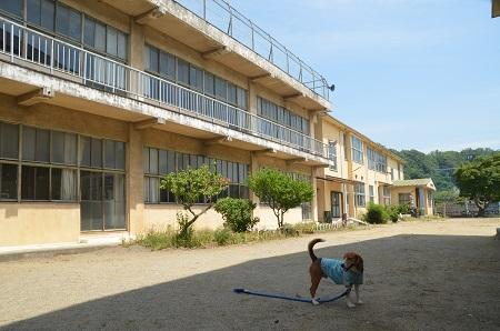 20140602沢松小学校18