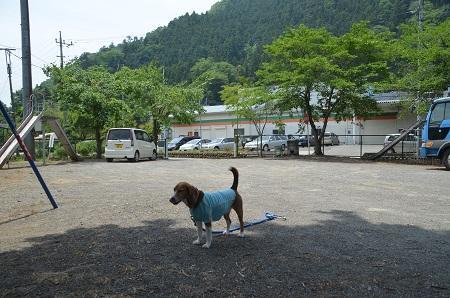 20140602棡原小学校尾続分校10