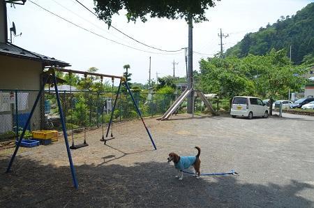 20140602棡原小学校尾続分校09