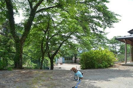20140602棡原小学校井戸分校02