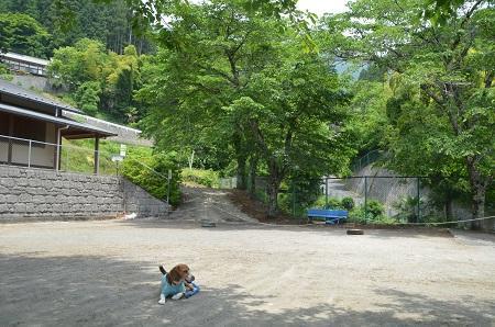 20140602棡原小学校井戸分校10