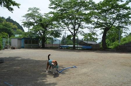 20140602棡原小学校井戸分校07