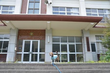 20140602浜沢小学校11