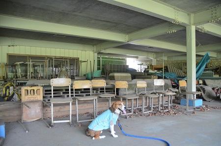 20140602浜沢小学校21