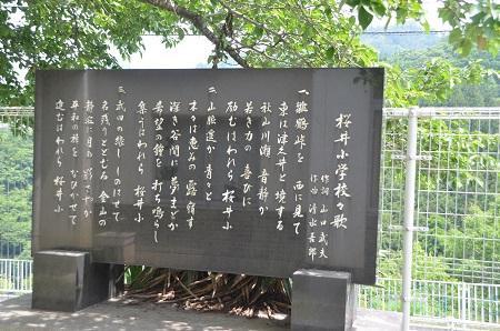 20140602桜井小学校05