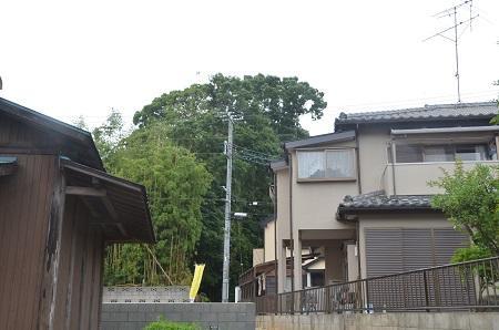 20140605妙見神社 高津08