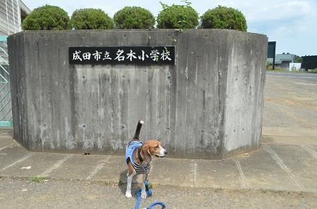 20140620名木小学校01