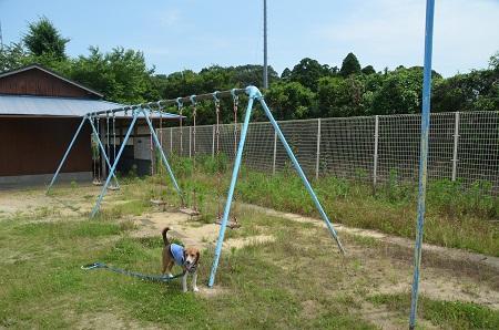 20140620名木小学校29