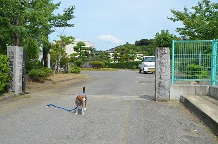 20140620高岡小学校03