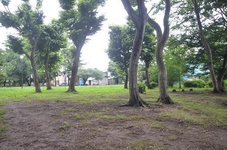 20140625志津自然園15